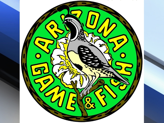 Glendale man alleges arizona game fish officers for Az game and fish