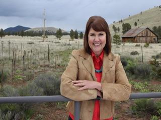 Democrat Kirkpatrick takes McSally's former seat