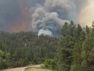 Firefighters keep Cedar Fire at bay