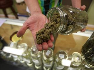 Officials ready for new CA marijuana laws