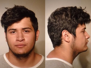 PD: Man arrested for bestiality east of Yuma