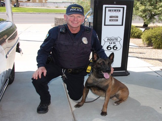 Kingman K-9 officer euthanized due to disease