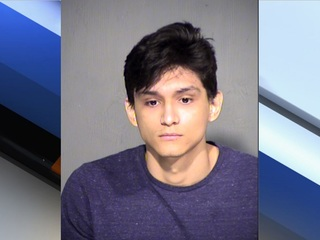 MCSO: Dog injured when thrown on concrete floor