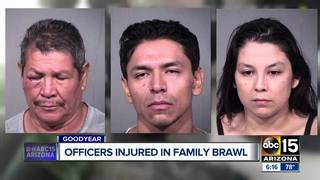 Goodyear officers injured in brawl with family