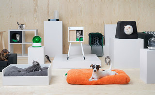 Pet furniture! Ikea caters to furry friends