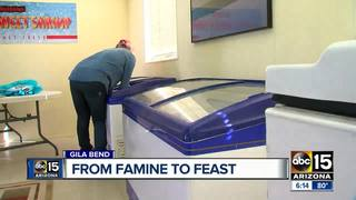 Desert Shrimp farm back in business
