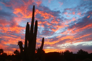 Gorgeous Arizona sunrise on Monday morning