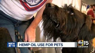 Do hemp products REALLY work on pets & humans?