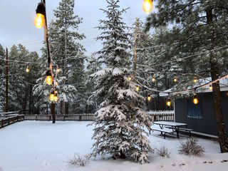GALLERY: Snow in northern Arizona!