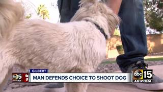 Valley man shoots dog during attack in Gilbert