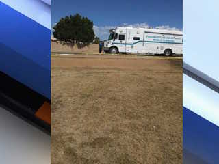 PHX PD: Man found dead inside car, info sought