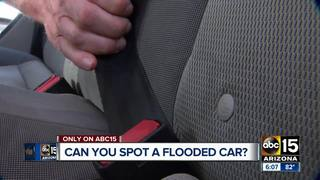 Could you spot a flooded car for sale?