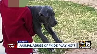 Man intervenes after seeing boy body-slam puppy