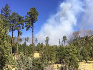 Fireworks spark 60-acre wildfire near Payson