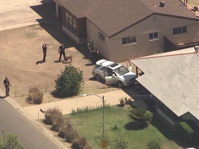 PHX PD: Pursuit suspect hospitalized, K-9 killed