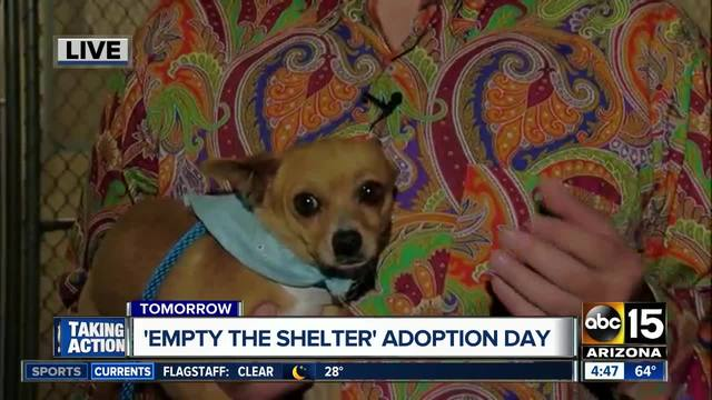 Empty the Shelter Pet Adoption Event