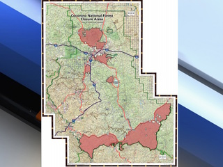 Fire danger closing areas of Coconino forest