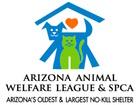 BOGO deal for summer camp with animals!