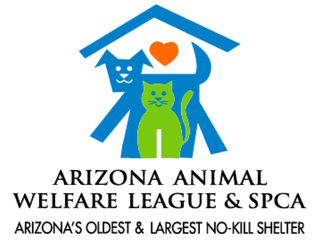 BOGO deal for summer camp with animals!