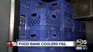 Cooler failure leaves Chandler food bank in need