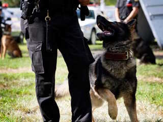 The training behind becoming a police K9 unit