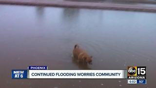Continuous flooding worries Phoenix neighborhood