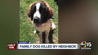 Valley family mourning after dog shot and killed