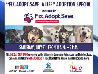 FREE pet adoptions at 6 locations on Saturday