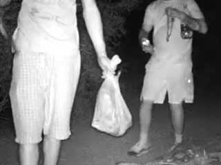 VIDEO: Toads taken from Valley conservation area