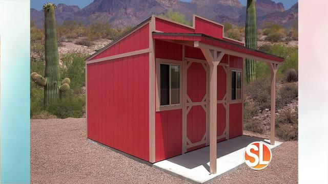 MORE STORAGE: Discount Sheds Shows How They Can Create A CUSTOM Shed For  Your Home
