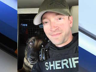 MCSO deputy kills dog in Youngtown during attack