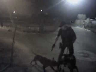 MCSO releases video of attack on K9 Tarzan