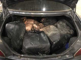 CBP: 174 pounds of marijuana found in trash bags