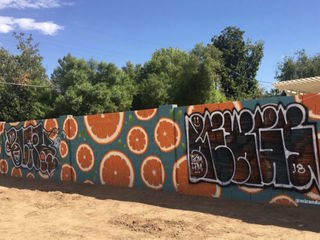 PHX community goes after mural vandal online