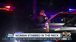 PD: Woman stabbed to death, suspect in custody