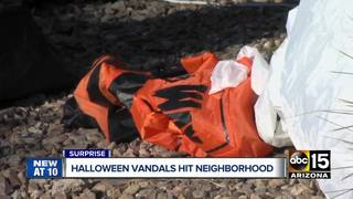 Halloween decorations destroyed in Surprise