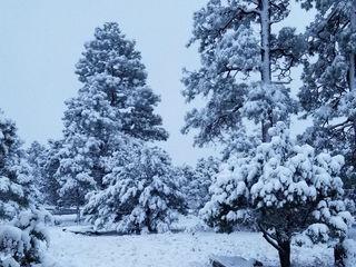 PHOTOS: Snow hits northern Arizona