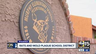 Report details rats, mold plaguing PHX district