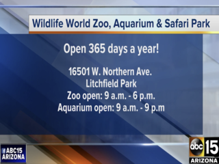 Zoo Spooktacular offers free admission to kids