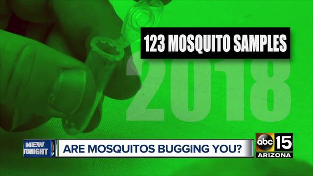 Valley residents report uptick in mosquitos during wettest month of…