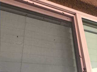 Neighbors look for cause of Buckeye fly invasion